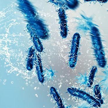 Удаление вирусов с помощью химикатов