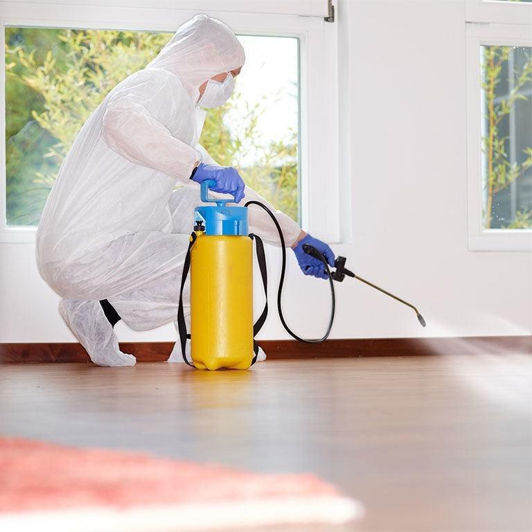 Дезинфектор производит опрыскивание поверхностей в жилом помещении