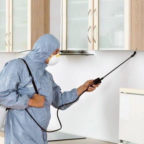 Мужчина-дезинфектор проводит обработку квартиры с целью дезинфекции.