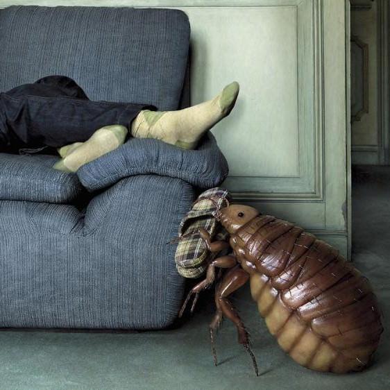 Клоп подаёт тапочек хозяину, который лежит на диване